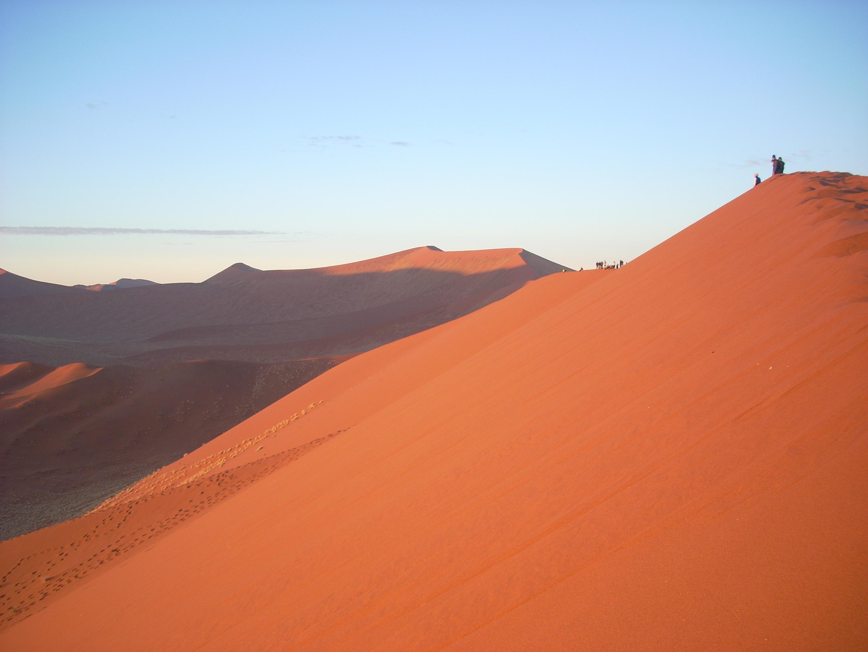 ナミブ砂漠の画像 p1_36
