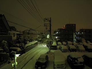 0215大雪再来朝1