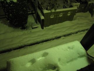 0215大雪再来朝2