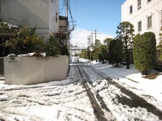 0209大雪後の我が家周辺3