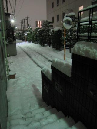 0215大雪再来朝3