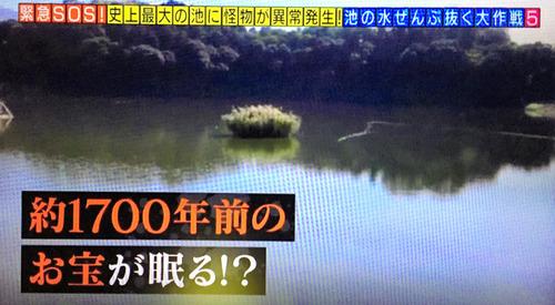 20171201-00000094-asahi-000-8-view
