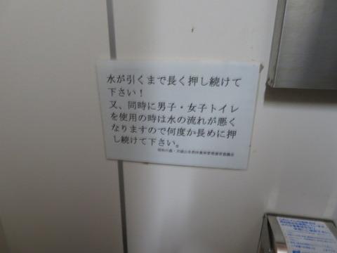 IMG_0238