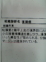 b5fa966a.jpg