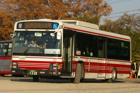 IMGP1262 (3)