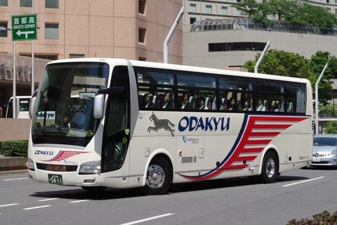IMGP3659 (2)