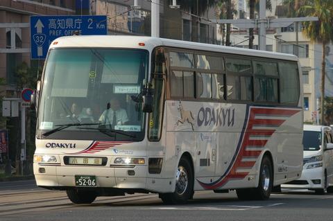 IMGP4503 (2)