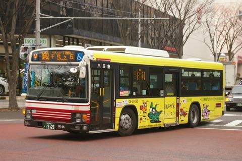 IMGP6397 (2)