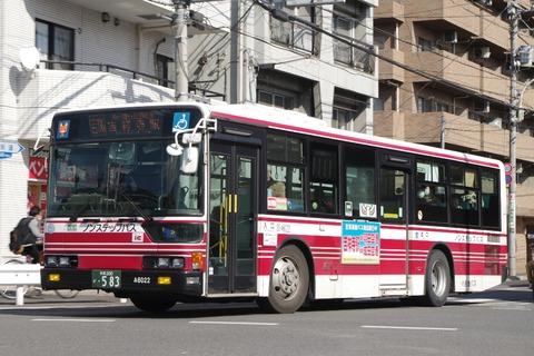 IMGP0737 (2)
