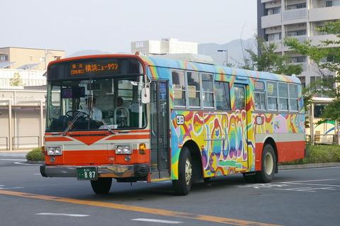 IMGP4349 (2)