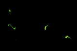 77c3cfd8.jpg