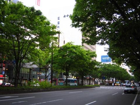 Aoba-dori_Avenue