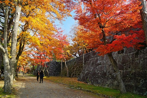 1024px-171103_Morioka_Castle_Morioka_Iwate_pref_Japan01s3