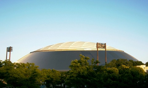 Seibu_Dome_baseball_stadium_-_01