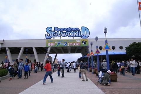 Kamogawa_sea_world