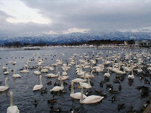 Lake_Hyouko