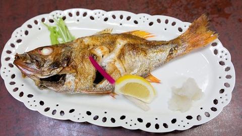 Nodoguro_grilled_with_salt,_Kappo_Uosen,_Nagaoka_01