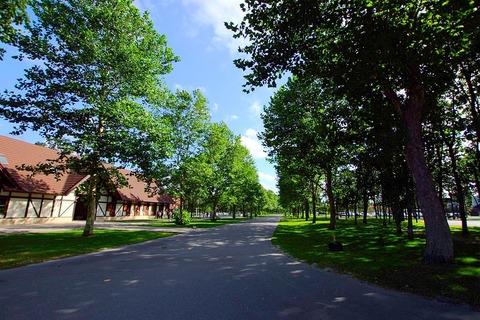 ノーザンホースパーク(Northern_Horse_Park)_-_panoramio_(2)