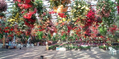 Center_house_Matsue_Vogel_Park