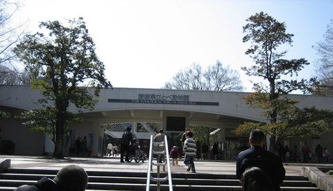 Tobe_zoo_とべ動物園