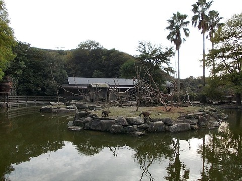 1024px-Nagasaki_Bio_Park_P