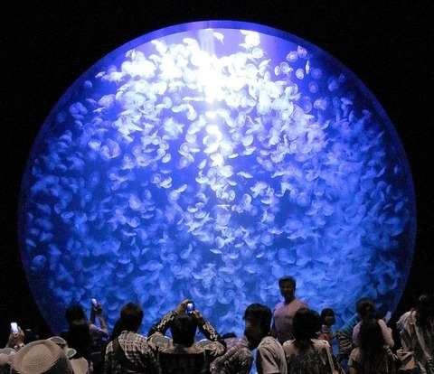 Kamo_Aquarium_Water_tank