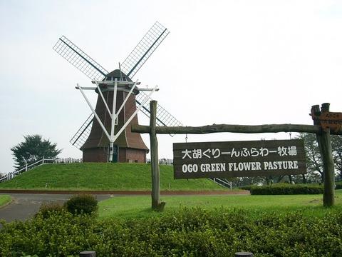 Michinoeki_green_flower_stock_farm_ogo