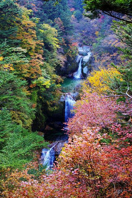 Jinja-falls-ojirogawa_(200811)