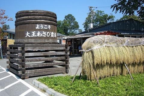 1024px-Daio_wasabi_farm10bs1980