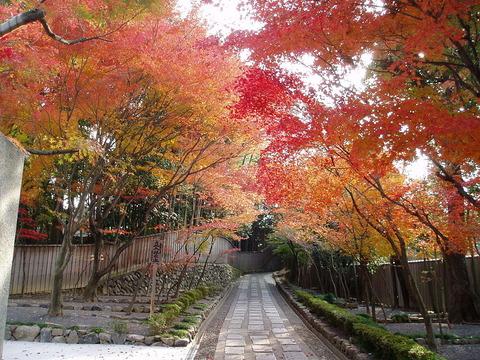 1024px-東福寺(051128)_28