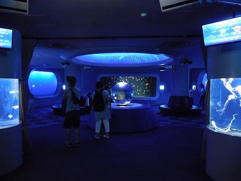 800px-Jellyfish_Fantasy_Hall_at_Enosui
