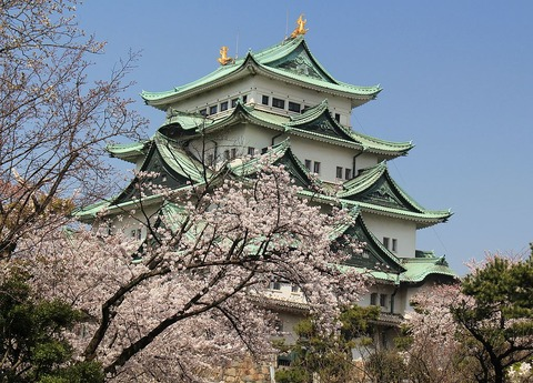 (with_Sakura)_Nagoya_Castle_Keep_Tower