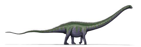 1200px-Supersaurus_dinosaur