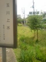 笹塚上水道
