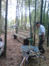 竹やぶの中では
