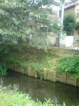 笹塚上水道3