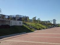 豊洲屋上公園JPG (4)