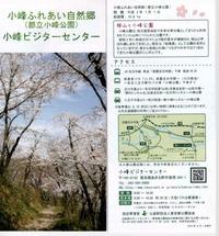 小峰公園0