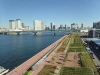 豊洲屋上公園JPG (2)