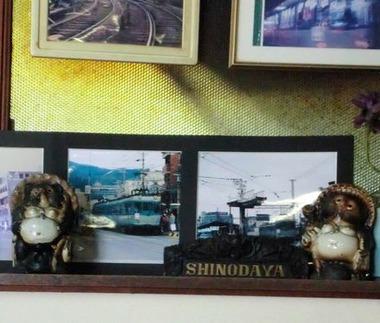 shinodaya9