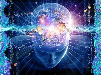 150908a_脳科学
