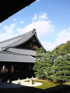161103東福寺2