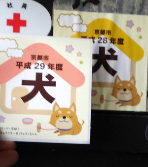 170412狂犬病予防3