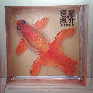 200805金魚6