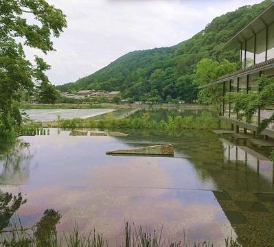200701嵐山6