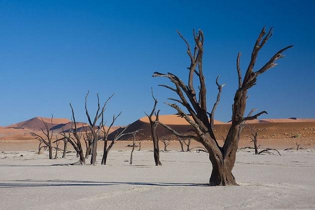 Deadvlei-Namibia-9