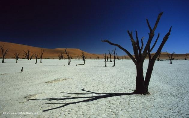 Deadvlei-Namibia-3