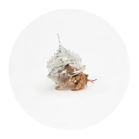 3d-printed-hermit-crab-architectural-shells-aki-inomata-1