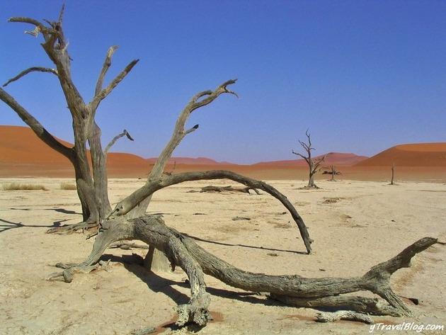 Deadvlei-Namibia-4