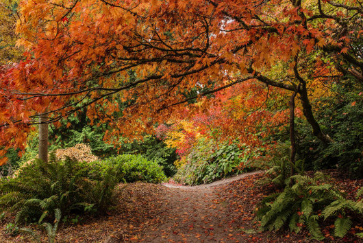 autumn_is_such_a_beautiful_season_640_25
